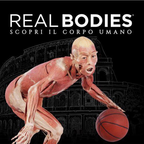 1-realbodies